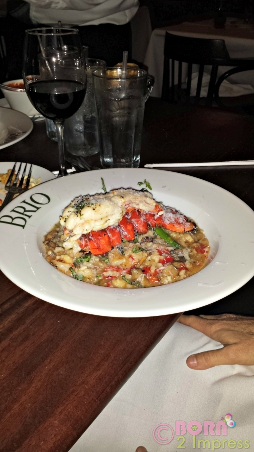 rissotto--lobster