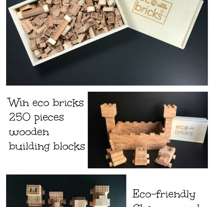 Celebrate Earth Day with Once Kids and eco bricks Giveaway!