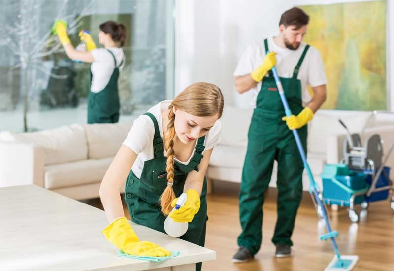 Challenges of Maintaining a Clean Home in Today's Reality